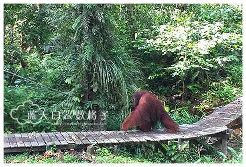20160523_Kuching_0110