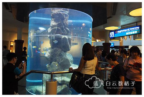 20160622_Underwaterworld_0122