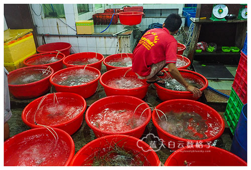 Thanh Phat Seafoods, Vung Tau