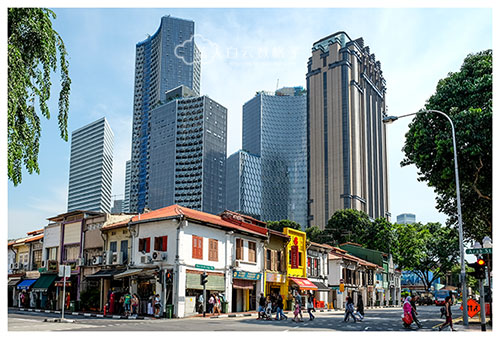 新加坡美食:Singapore Zam Zam
