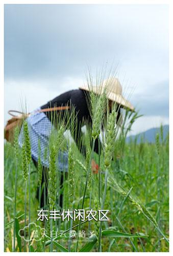 20170222_Hua-Lian-Tai-Tung-Taipei_0246