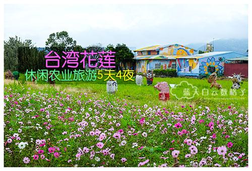 20170223_Hua-Lian-Tai-Tung_2952