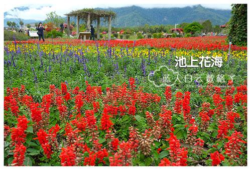 20170225_Hua-Lian-Tai-Tung_1916
