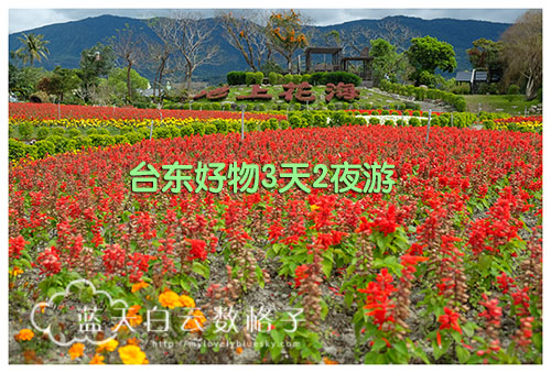 20170225_Hua-Lian-Tai-Tung_2089