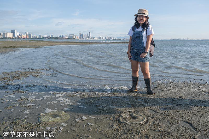 槟城海草床不是旅游打卡点