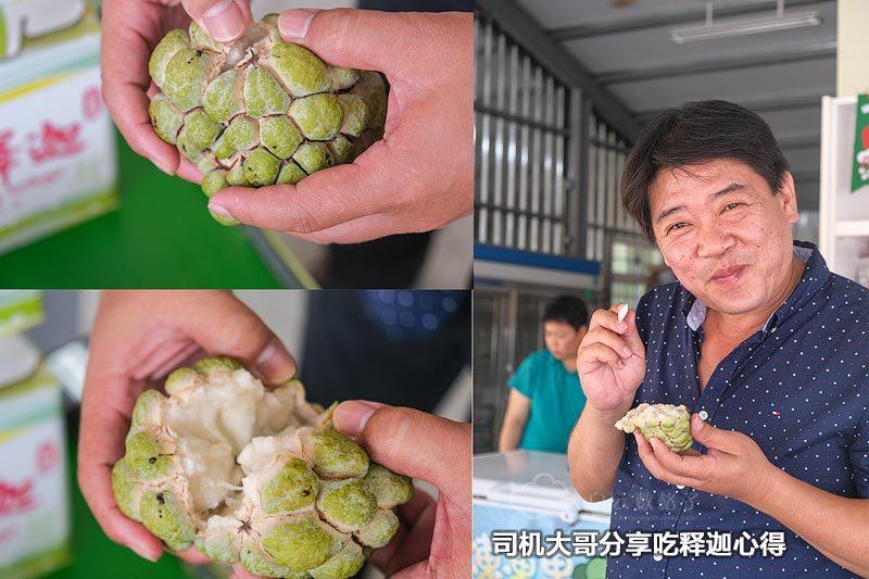 台北包车司机 介绍沿途水果
